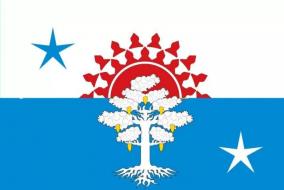 Флаг Серова