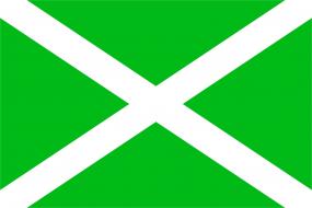 Флаг таможенных органов Российской Федерации (ФТС России)