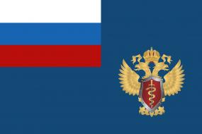 Флаг Федеральной службы Российской Федерации по контролю за оборотом наркотиков (ФСКН России)