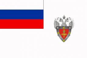 Флаг Федеральной службы по техническому и экспортному контролю (ФСТЭК России)