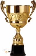 Кубок 2007